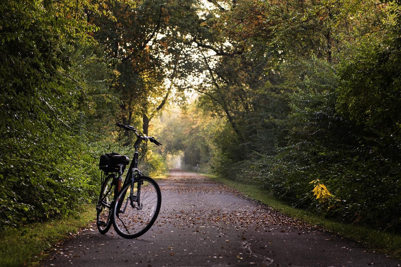 bike-2769021_1280